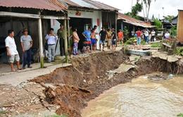 Hậu Giang: Di dời khẩn cấp dân ra khỏi vùng nguy cơ sạt lở cao