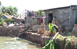 Hơn 200 hộ dân Đồng Tháp bị ảnh hưởng do sạt lở