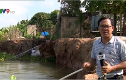 Đồng Tháp tiếp tục công bố tình trạng khẩn cấp do sạt lở bờ sông Tiền