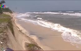 Đẩy nhanh tiến độ xây kè chống sạt lở bờ biển