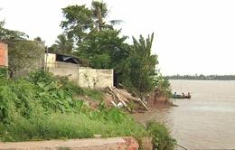 Đồng Tháp thiếu nơi di dời dân vùng sạt lở