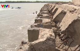 Bạc Liêu: Sạt lở bờ biển nghiêm trọng đe dọa hệ thống kè