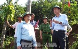 Hòa Bình: Hoàn tất việc di dời 58 hộ dân huyện Kim Bôi ra khỏi vùng sạt lở