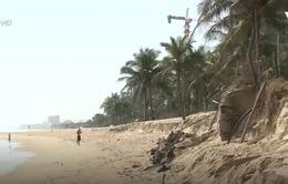 Sạt lở bờ biển tại các tỉnh miền Trung có dấu hiệu tăng