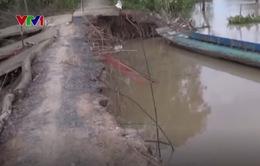 Sạt lở đe dọa đường giao thông nông thôn ở Tiền Giang