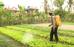 Xu hướng sử dụng thuốc trừ sâu sinh học