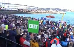 Lễ hội tắm sông băng đầu năm mới tại Scotland