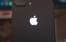 Chỉ với 30 USD, trái táo trên iPhone sẽ trở nên huyền ảo