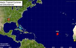 Siêu bão Irma hình thành trên Đại Tây Dương