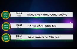 """Các chương trình XHH mang tính nhân văn trên VTV8 """"hút"""" khán giả"""
