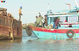 Hàng loạt tàu cá mắc cạn trên sông Gianh (Quảng Bình)