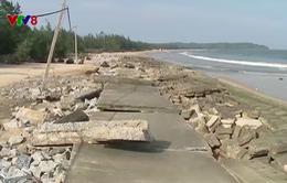 """Quảng Nam: Khẩn cấp """"cứu"""" đê biển Tam Hải bị sóng đánh hỏng"""