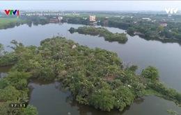 Khám phá Việt Nam: Thi vị vẻ đẹp Đảo Cò Chi Lăng Nam