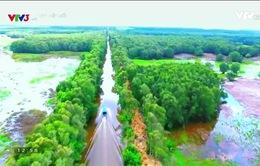 Bay bổng phương Nam: Khám phá cảnh sắc phương Nam tuyệt đẹp bằng góc máy flycam