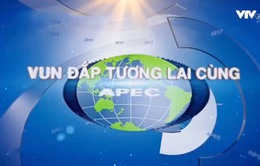 Lịch phát sóng các chương trình đặc biệt về APEC trên VTV