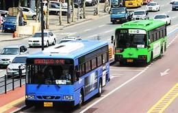 Hàn Quốc sẽ miễn phí phương tiện công cộng tại Seoul