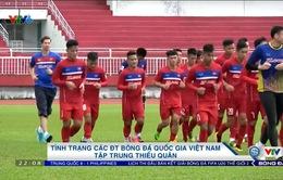 Tình trạng các ĐTQG Việt Nam tập trung thiếu quân