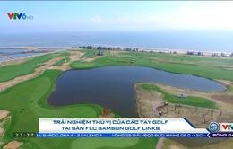 Trải nghiệm thú vị của các tay golf tại sân FLC Samson Golf Links