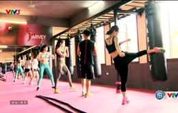 Phong trào tập luyện Kick-Fit thu hút phái đẹp tại Hà Nội