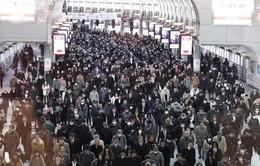 Giờ cao điểm ở nhà ga Shinagawa, Nhật Bản