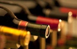 Tranh cãi về thuế đánh vào đồ uống có cồn tại Anh