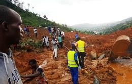 Cảnh báo nguy cơ bùng phát dịch bệnh ở Sierra Leone