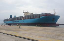 Đón tàu lớn nhất thế giới, Cái Mép thành cảng trung chuyển Quốc tế