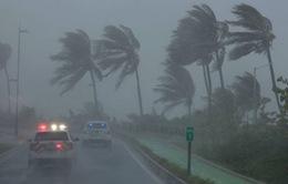 Cuba, Mỹ và Mexico khẩn trương đối phó với bão Irma