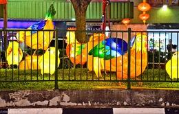 Lễ hội đèn lồng đón tết Đinh Dậu tại Singapore