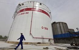 Tập đoàn Sinopec bán tháo tài sản dầu khí ở Argentina