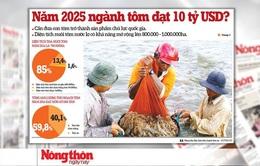 Việt Nam là thủ phủ tôm thế giới: Tại sao không?
