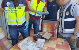 Bắt giữ 101 người trong đường dây buôn người từ Iran vào châu Âu