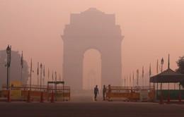 Ấn Độ: New Delhi công bố tình trạng ô nhiễm không khí khẩn cấp