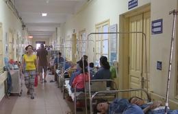 225 ca mắc sốt xuất huyết tại Hà Nam