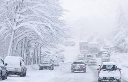 Miền Đông Nam nước Mỹ chuẩn bị đón bão tuyết