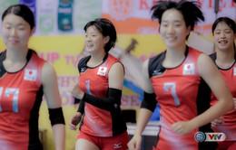 VIDEO: Vẻ đẹp của 10 ứng viên Hoa khôi VTV Cup Tôn Hoa Sen 2017