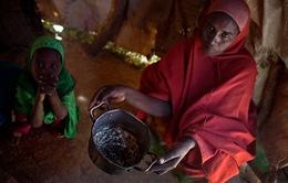 Mất an ninh lương thực đe dọa mạng sống của hàng triệu trẻ em