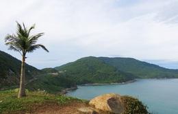 Kiến nghị xem xét lại Quy hoạch Khu du lịch quốc gia Sơn Trà