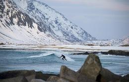 Trải nghiệm lướt sóng đặc biệt ở Bắc Cực