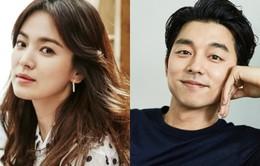 Song Hye Kyo thổ lộ muốn đóng cùng Gong Yoo