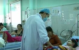 Đồng Tháp: Gia tăng số ca sốt xuất huyết nặng