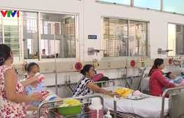 Hải Dương: Hơn 300 trường hợp dương tính với sốt xuất huyết