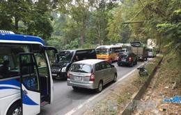 3 ô tô đâm liên hoàn gây ách tắc Quốc lộ 4D đoạn Sa Pa-Lào Cai