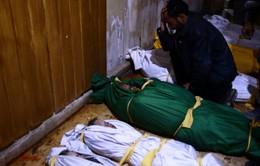Phái viên LHQ: Vụ tấn công ở Syria là tấn công hóa học
