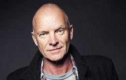 Thành công rực rỡ, Sting vẫn còn tò mò về âm nhạc