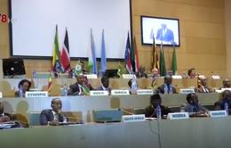 Chính phủ Nam Sudan ký thỏa thuận ngừng bắn với phe nổi dậy
