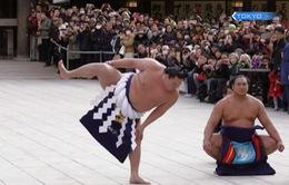 Nghi lễ chào năm mới của những võ sĩ Sumo Nhật Bản