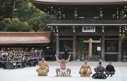 Màn dậm chân đón năm mới của 3 võ sĩ sumo nổi tiếng nhất Nhật Bản