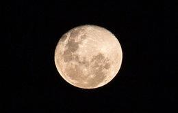 Nhật Bản hé lộ thời điểm đưa người lên Mặt Trăng