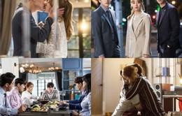 Chỉ với một nụ hôn, phim của Ji Chang Wook đã gần bắt kịp Mặt nạ quân chủ
